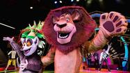 Don't miss: 'Madagascar Live! Operation: Vacation' at Busch Gardens