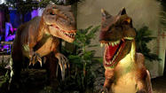 Photos: Dinosaurs get 'unearthed' at Exploration Place