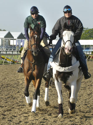 Exercise rider Pete Shelton, left, guides Hey Byrn during a light morning workout at Pimlico as outrider Sharon Greenbaum stays close with her pony.