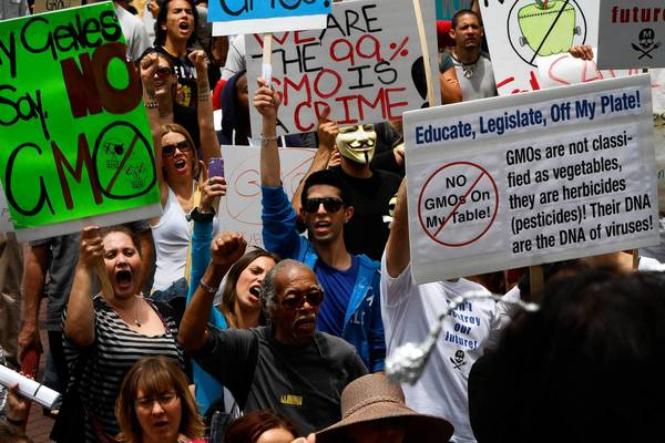 Hundreds of protesters took to the streets in downtown Los Angeles on Saturday as part of a global series of marches against seed giant Monsanto Co. and genetically modified foods.
