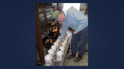 Everett Sechler inspects several gallons of syrup to make sure that they are prepared for sale later this month. This year, the Sechlers boiled 1,700 gallons of syrup.