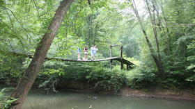 National Trails Day June 1: Hike Virginia's 22 scenic state forests