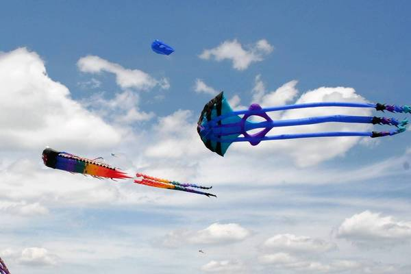 Kites of all shapes and sizes are flown by pros -- and even kids -- at the annual Kite Fly Festival in Naperville.