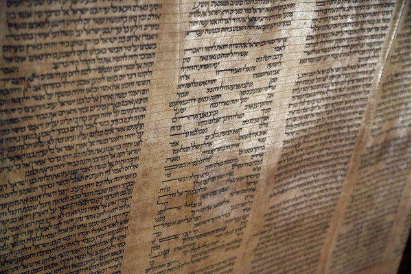 Torah at University of Bologna