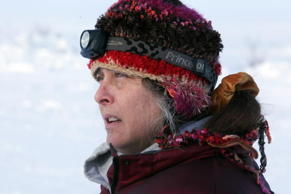 "Susan Aikens searches the horizon for the wolf she believes is hunting her on the show ""Life Below Zero."""