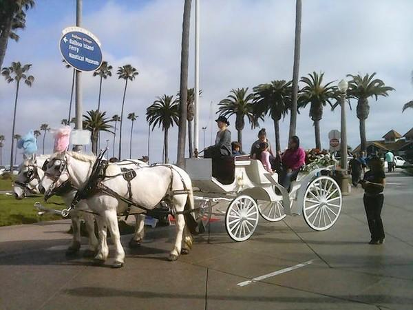 Balboa Village horse-drawn carriage rides are returning in June.