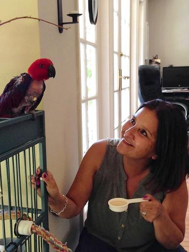 Irma Fisher is happy that Lola, the lost parrot of friend and Costa Mesa resident Suzette Fish, is finally home.