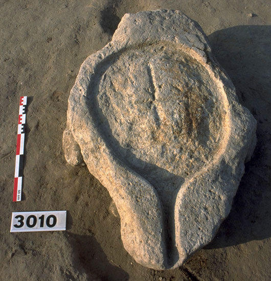 A pressing platform from Lattara, an ancient city in France, shows a spout for drawing off a liquid. It was raised off the courtyard floor by four stones. Grape remains were found nearby.