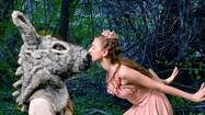 "Join fairies and a very confused man who is magically turned into a donkey at the Pennsylvania Youth Ballet's production of ""A Midsummer Night's Dream."""