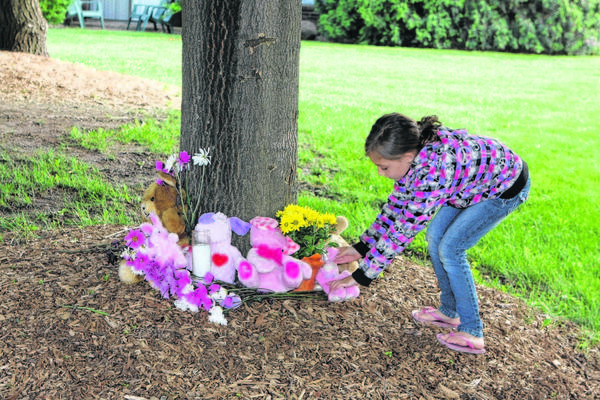 Alexis,6, places a Stuffed animal at the foot of a tree in memory of a 6 year old girl that was stabbed and killed at the Irish Hills Apartments early Sunday Morning.