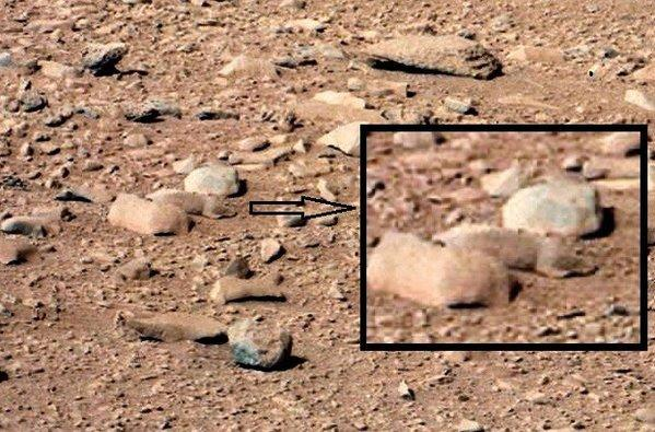 """Mars rat: An image from the """"Rocknest"""" site taken with the NASA rover Curiosity's Mast Camera on the 52nd Martian day shows a rock that resembles a rodent."""