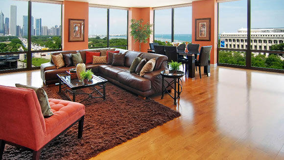 An August 2011 listing photo shows the views from the living room of Charles Oakley's condo.