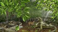 Lizard named for Jim Morrison; Hunter S. Thompson also considered