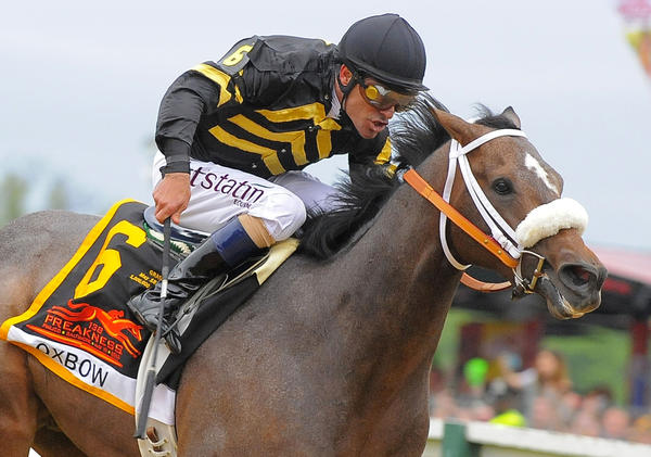 Oxbow, who won the Preakness, is looking to repeat in the Belmont.