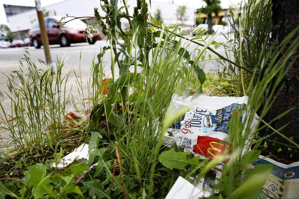 Under a proposed City Council ordinance, any adult who throws trash from a stationary or moving vehicle would face a fine of $1,500 and the impoundment of their vehicle.