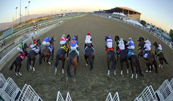 In the wake of Betfair Hollywood Park's pending closing, Santa Anita is considering the addition of night racing at the track.