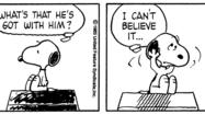 "The comic strips of ""Peanuts"""
