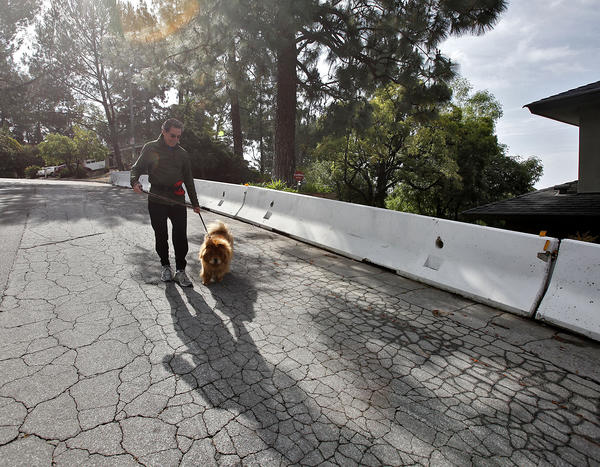 La Cañada resident Eldon Horst with his dog David, pass along k-rails near the end of Big Briar Way on Wednesday, May 8, 2013. The City Council voted on Monday, June 3, to remove the barriers that were installed on streets that interfaced with the 2009 Station fire burn area.