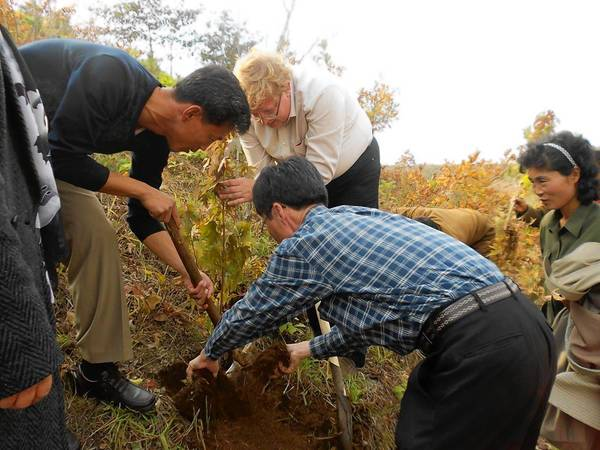 Nonprofit workers and North Korean farmers work together to plant tree seedlings on a hillside in the Anbyon Plain in North Korea, as part of a project to encourage sustainable agriculture and restore the habitat for migratory cranes.