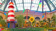 Las Vegas: Bellagio conservatory celebrates summer with color