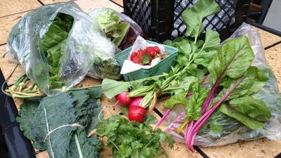 The Pick-Up: Week 1 of my CSA share includes 8 challenging items
