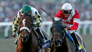 Santa Anita will play host to Breeders' Cup in 2014 as well
