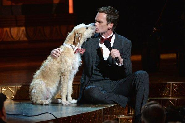 "Tony Awards host Neil Patrick Harris shares a moment with Sandy from the musical ""Annie"" during Sunday's telecast from Radio City Music Hall in New York."