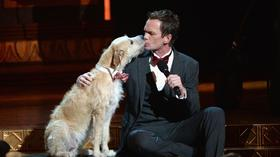 Neil Patrick Harris in Tonys telecast: What did the critics think?