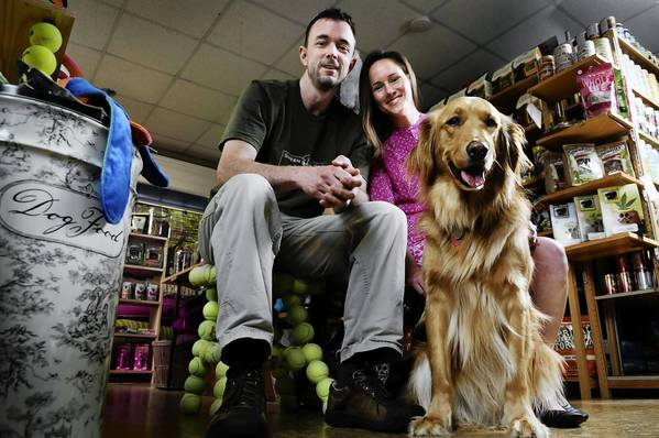 Paul and Ann Fryer opened a eco-friendly pet supply store called Green Dog Market in Farmington in April, 2012. Paul runs the store seven days a week with the help of their dog Chester. Ann works as a speech therapist and helps out at the store any chance she gets.
