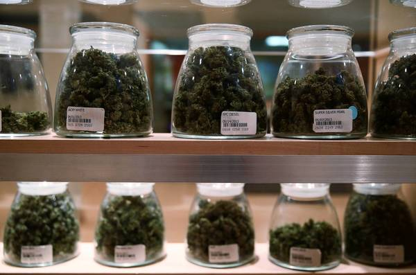 Mundelein officials are preparing to deal the potential passage of a medical marijuana bill.