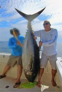 Hollywood veterinarian Tommy Sessa, right, caught this estimated 300-pound yellowfin tuna fishing in Panama. He needed 2 hours and 45 minutes to land the fish using 65-pound line.