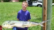 Lucas Farrell's 23.9-pound dolphin was the biggest fish caught in the Harbour Towne Marina Junior Angler Big Fish Tournament in Dania Beach.