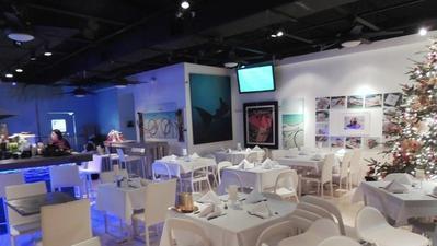 Top Broward restaurants - Barracuda Bar and Seafood