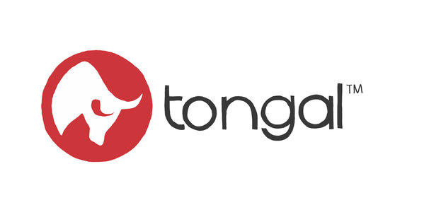 Tongal, which crowd-sources video ads, will now do music videos.