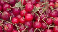 Jonathan Gold quiz: Cherries, round two