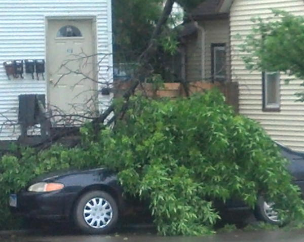 First Avenue Southeast between Arch and Kline streets in Aberdeen saw some tree branches knocked down as did neighborhoods throughout the region.