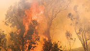 COLORADO SPRINGS, Colo. (AP) — Jaenette Coyne estimates she had five minutes to leave home after calling 911 to report forest fire smoke behind her home.