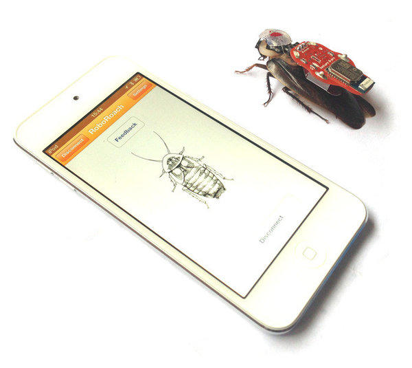 RoboRoach, a project on Kickstarter, allows users to control cockroaches using their smartphones.