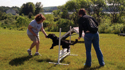 Josette Mickey, a dog trainer based in Somerset, helps Brenda Komer, Punxsutawney, train her border collie-cocker spaniel mix, Bo, how to jump on the dog agility course.