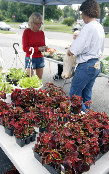 Karen Boxler, of South Bend, buys produce Saturday from LaPorte farmer Jean Rudolph at the new site of the Urban Garden Market at Lincoln Way West and Eclipse Place in South Bend.