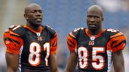 ESPN.com reports that former receiving great Terrell Owens visited his ex-Cincinnati Bengals teammate Chad Johnson at the Broward County Jail on Saturday.