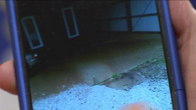 Ozarks businesses clean up as quickly as flash floods came and went
