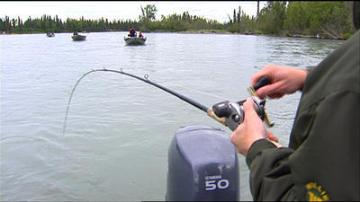 Kenai River Early-Run Sport Fishing for Kings to Close Thursday