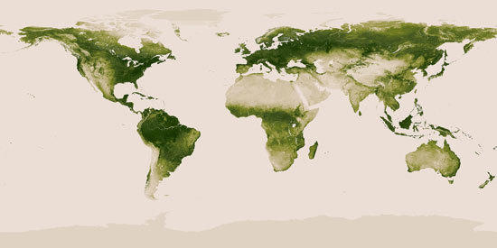 Scientists used data from a NASA and NOAA satellite, Suomi NPP, to create a new image of vegetation across the Earth.