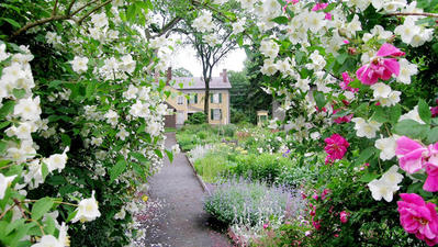 Celebrate Connecticut Historic Gardens Day This Sunday