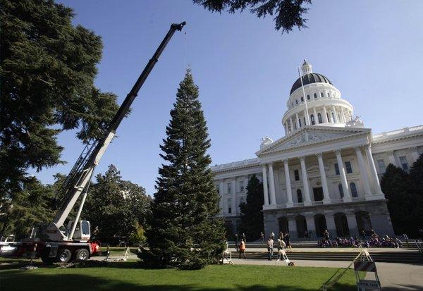 A crane places the state Christmas tree in front of the Capitol in Sacramento 2012, at about the same time lawmakers got the latest in a series of pay cuts. They got this year's seven months early with a 5% salary increase.