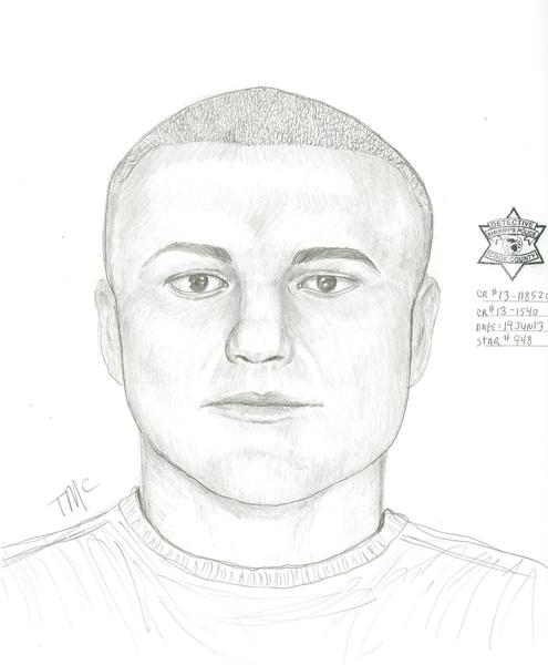 Sketch of a driver sought in a Bedford Park hit-and-run.