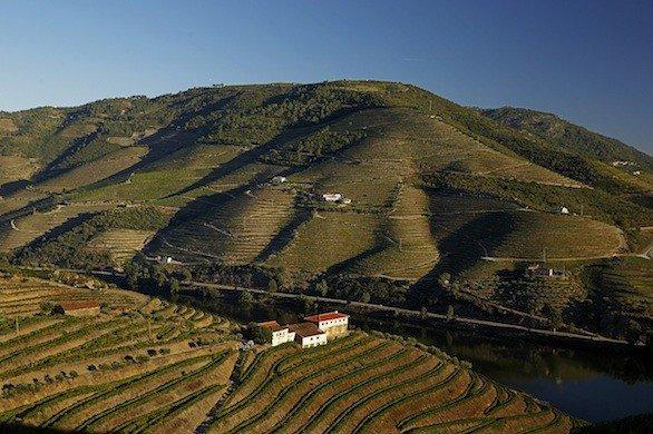 The Douro River and surrounding valley in northern Portugal was the No. 1 pick for Lonely Planet's places in Europe to visit this year.