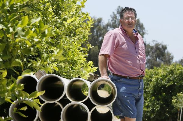 Anti-fracking activists allege that the process of removing oil from deep underground damages air quality, contaminates water sources and could potentially cause earthquakes. Above: Farmer David Schwabauer, a fourth-generation avocado and lemon grower, tours his property's irrigation system in Moorpark in the foothills just east of coastal Ventura. The Schwabauer family has been considering allowing energy companies to drill new exploratory wells in their orchards.