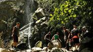 Hiking Chantry Flat to Sturtevant Falls in the Angeles National Forest